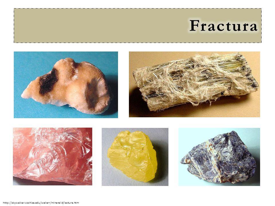 Fractura http://skywalker.cochise.edu/wellerr/mineralid/lecture.htm