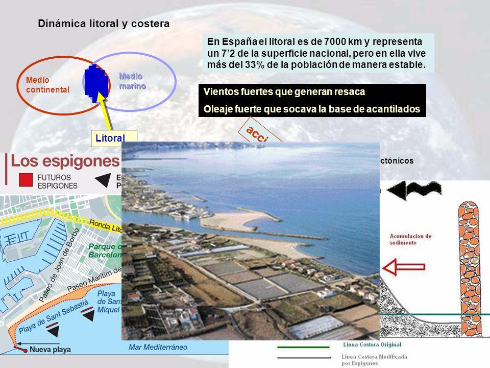 acciones Dinámica litoral y costera