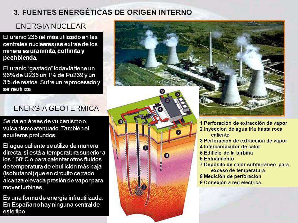 3. FUENTES ENERGÉTICAS DE ORIGEN INTERNO