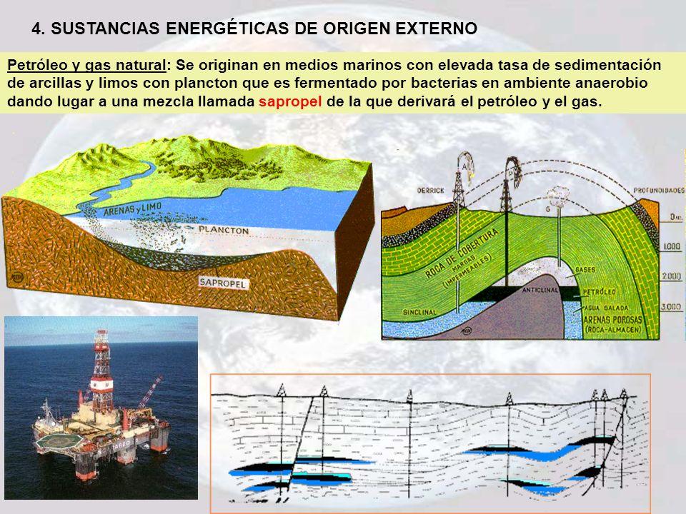 4. SUSTANCIAS ENERGÉTICAS DE ORIGEN EXTERNO