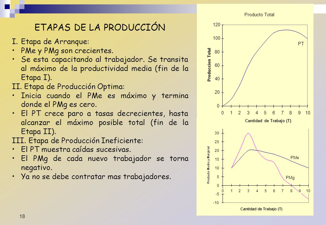 ETAPAS DE LA PRODUCCIÓN