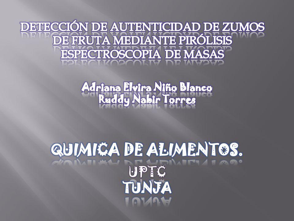Adriana Elvira Niño Blanco
