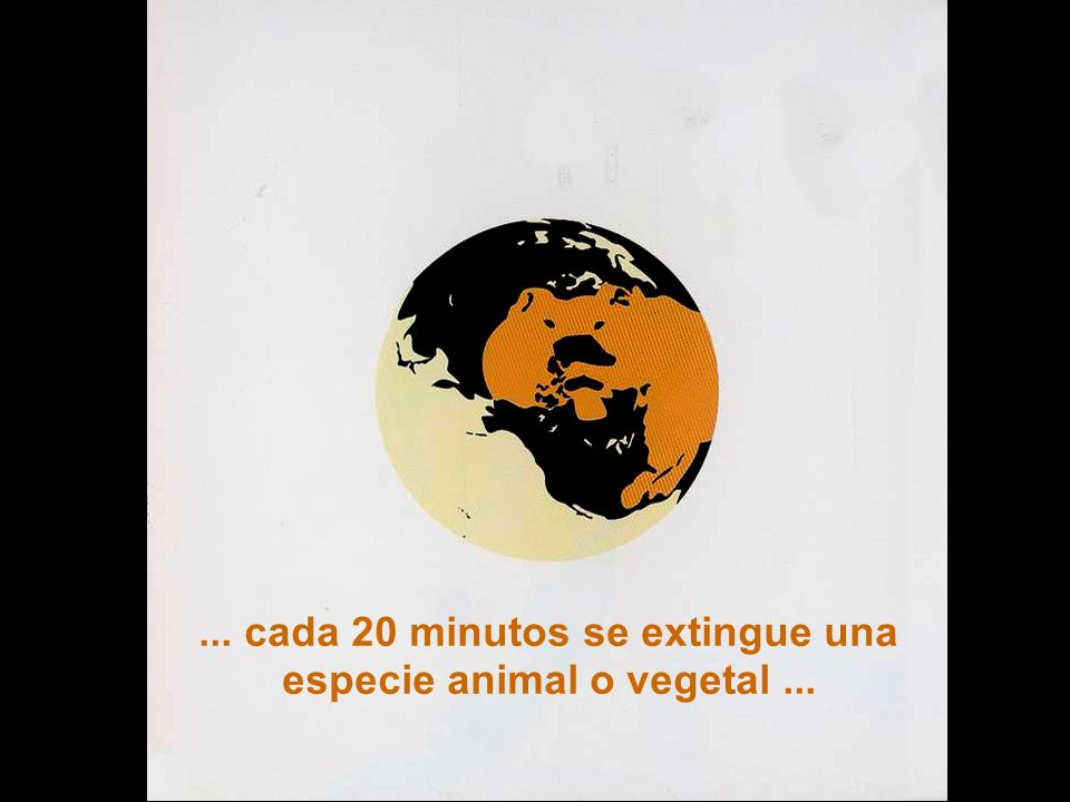 ... cada 20 minutos se extingue una especie animal o vegetal ...