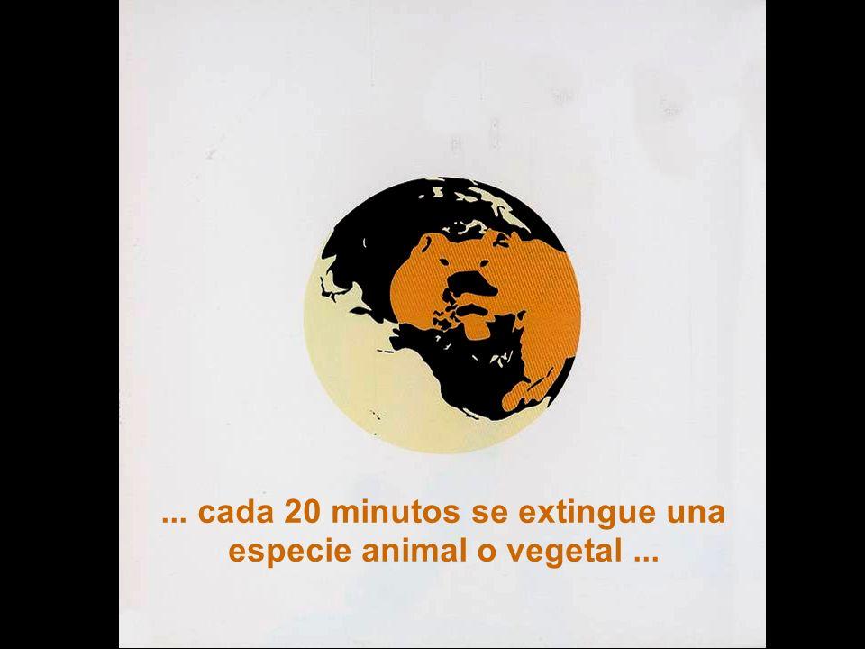 ... cada 20 minutos se extingue una especie animal o vegetal ...