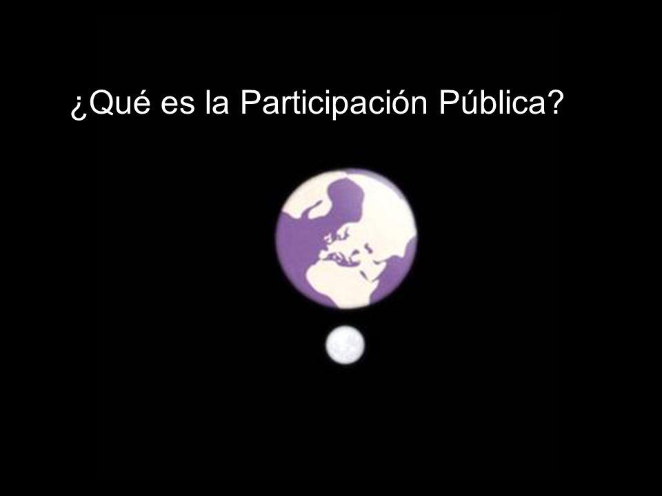 ¿Qué es la Participación Pública