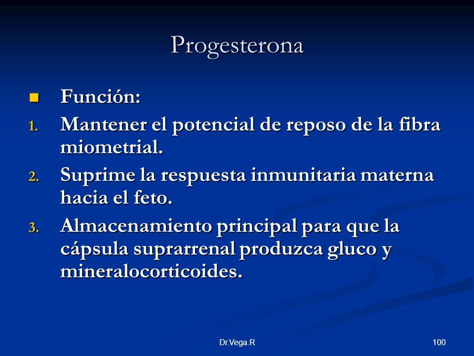 Progesterona Función: