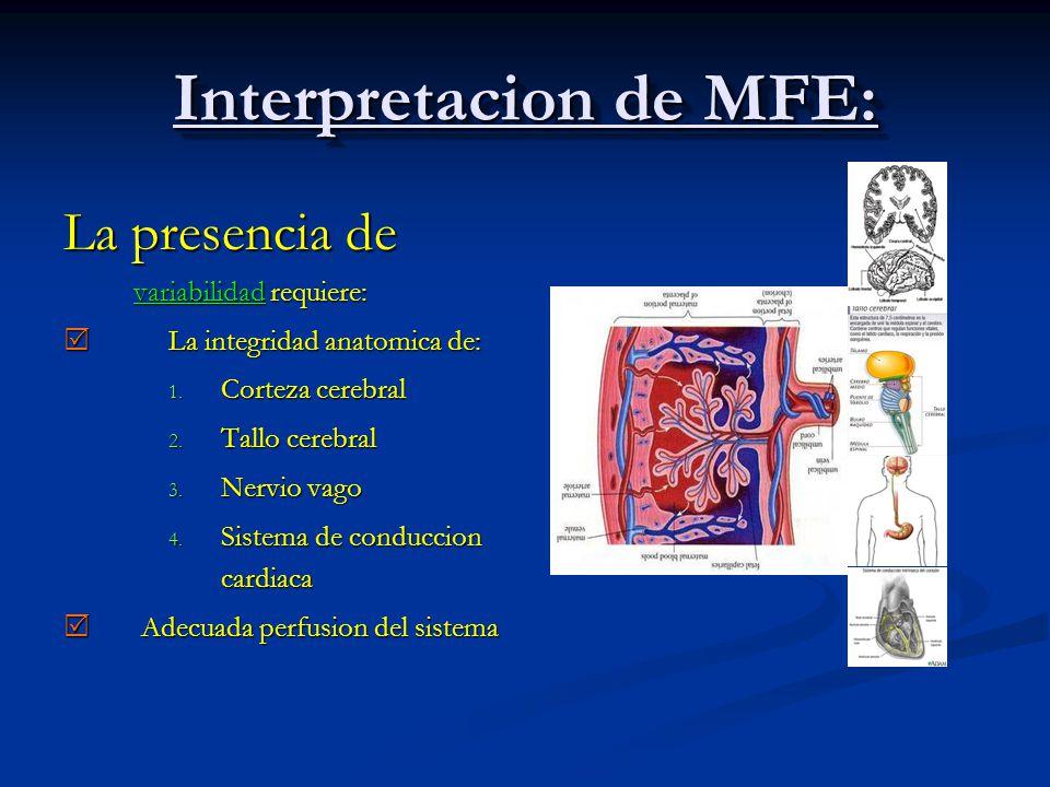 Interpretacion de MFE: