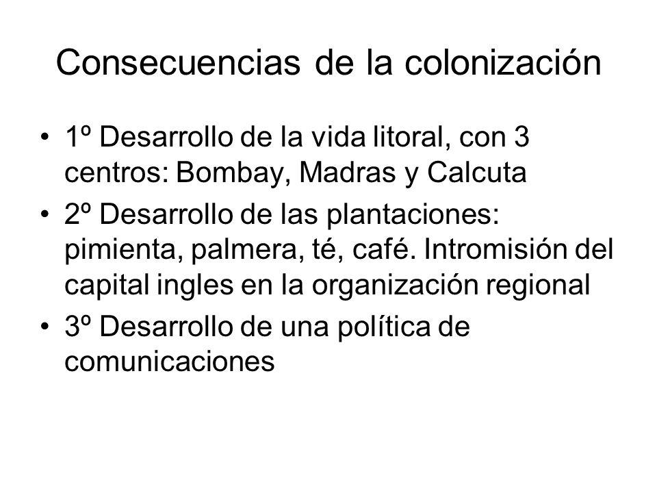 Consecuencias de la colonización