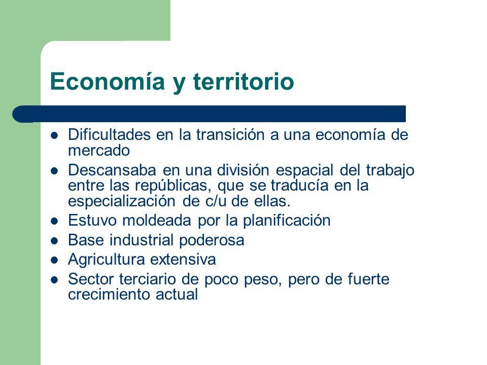 Economía y territorio Dificultades en la transición a una economía de mercado.