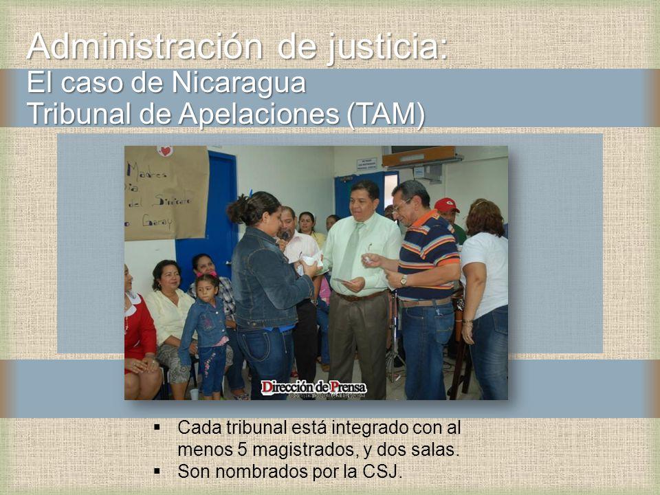 Administración de justicia: El caso de Nicaragua Tribunal de Apelaciones (TAM)