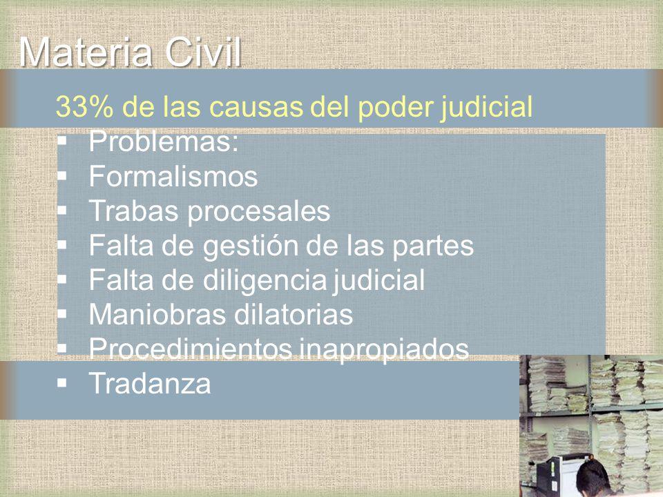 Materia Civil 33% de las causas del poder judicial Problemas: