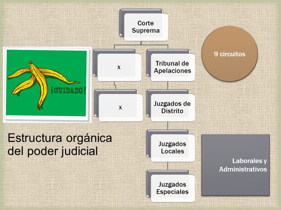 Tribunal de Apelaciones