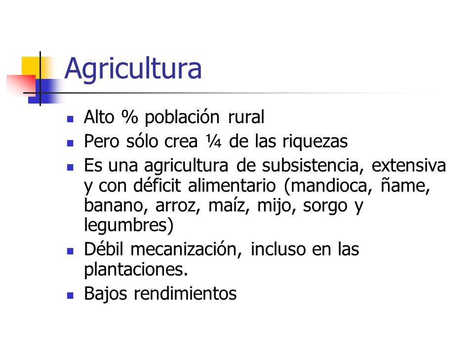 Agricultura Alto % población rural Pero sólo crea ¼ de las riquezas