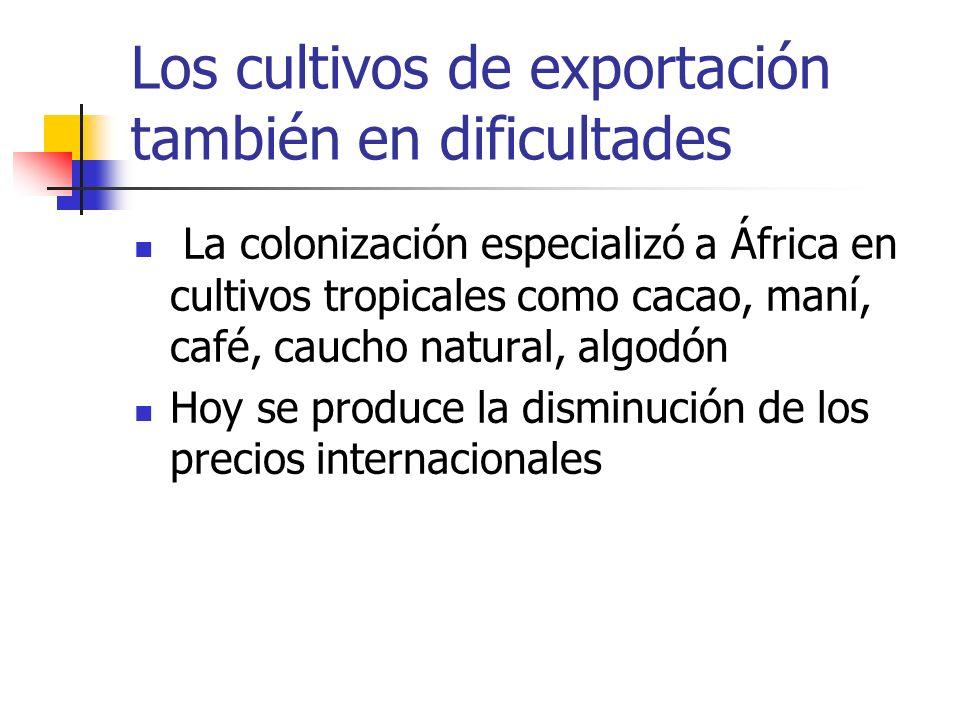 Los cultivos de exportación también en dificultades
