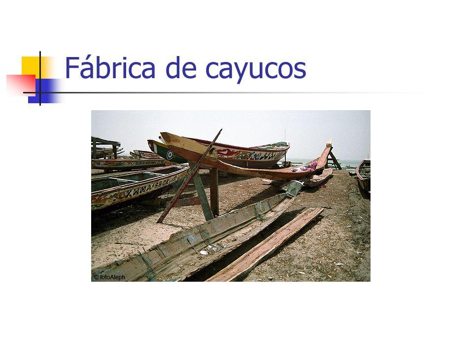 Fábrica de cayucos