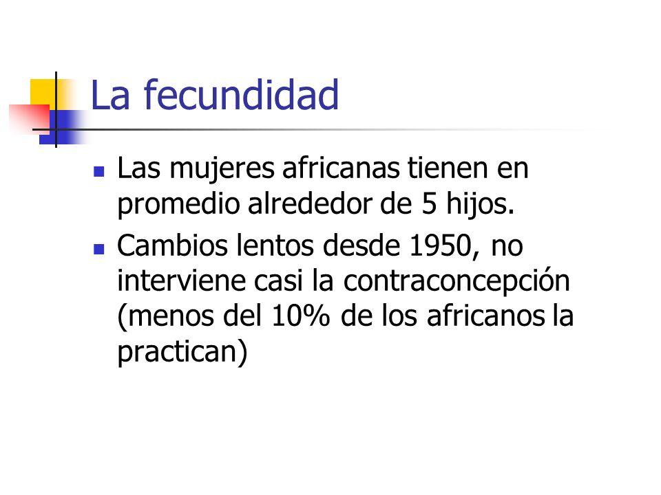 La fecundidad Las mujeres africanas tienen en promedio alrededor de 5 hijos.