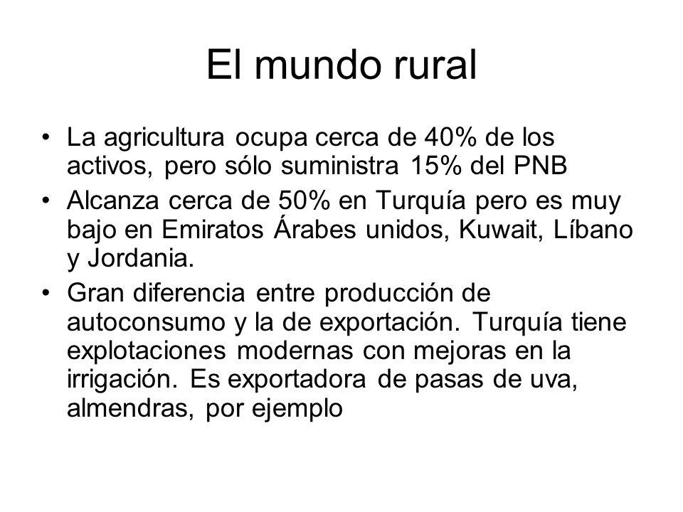 El mundo rural La agricultura ocupa cerca de 40% de los activos, pero sólo suministra 15% del PNB.