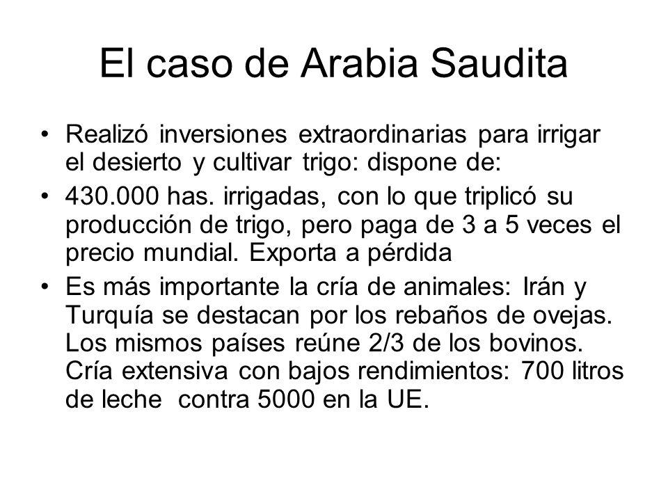 El caso de Arabia Saudita