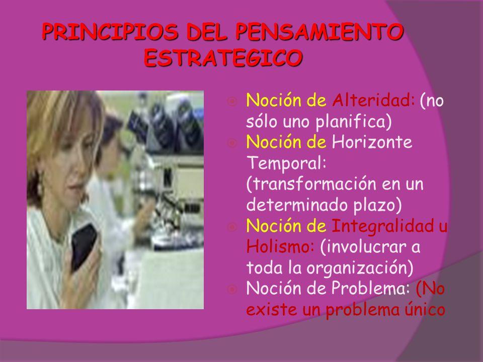PRINCIPIOS DEL PENSAMIENTO ESTRATEGICO