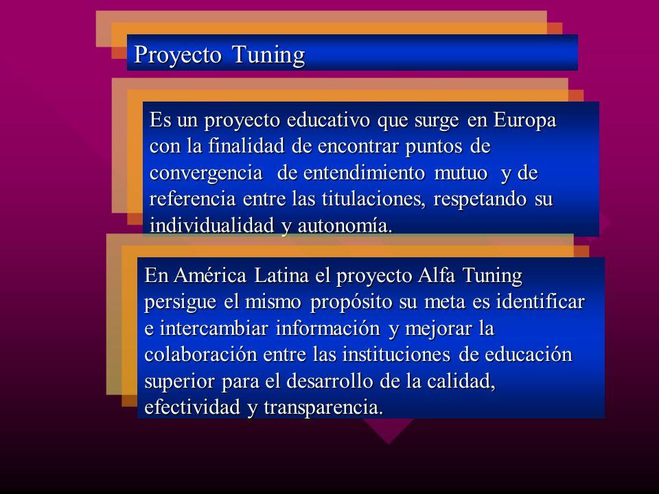 Proyecto Tuning