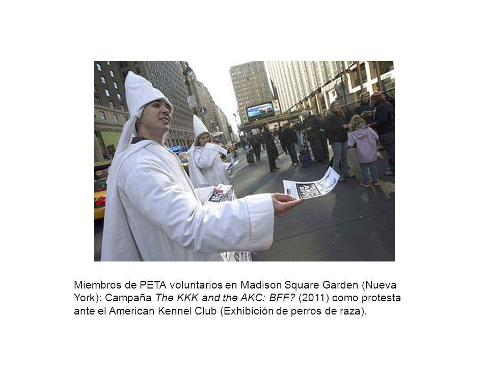 Miembros de PETA voluntarios en Madison Square Garden (Nueva York): Campaña The KKK and the AKC: BFF.