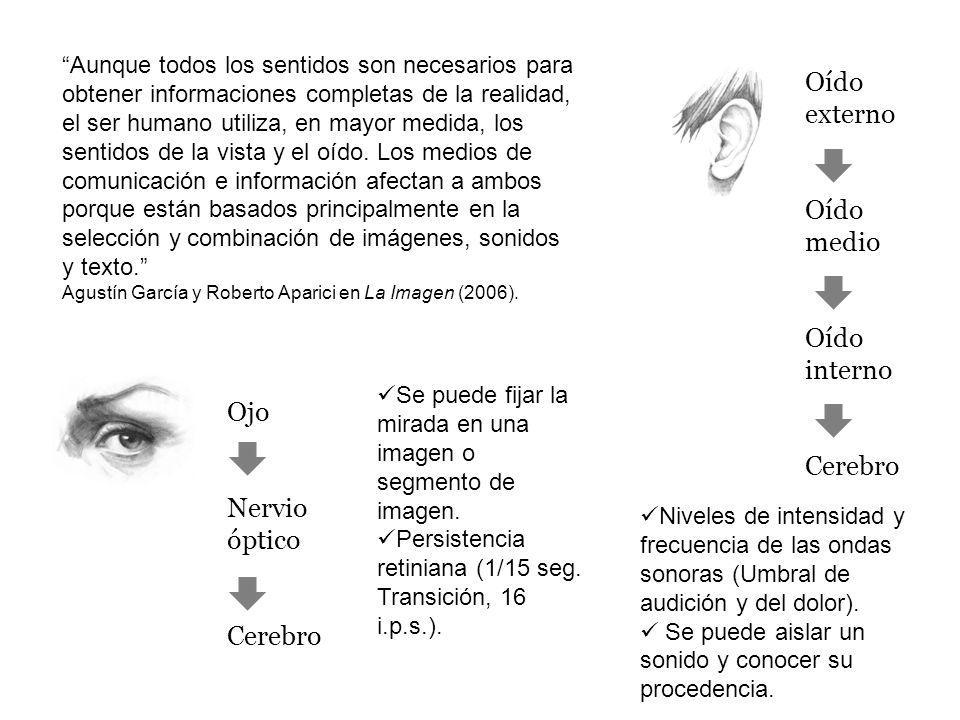 Oído externo Oído medio Oído interno Cerebro Ojo Nervio óptico Cerebro