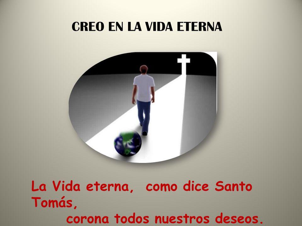 CREO EN LA VIDA ETERNA La Vida eterna, como dice Santo Tomás, corona todos nuestros deseos.