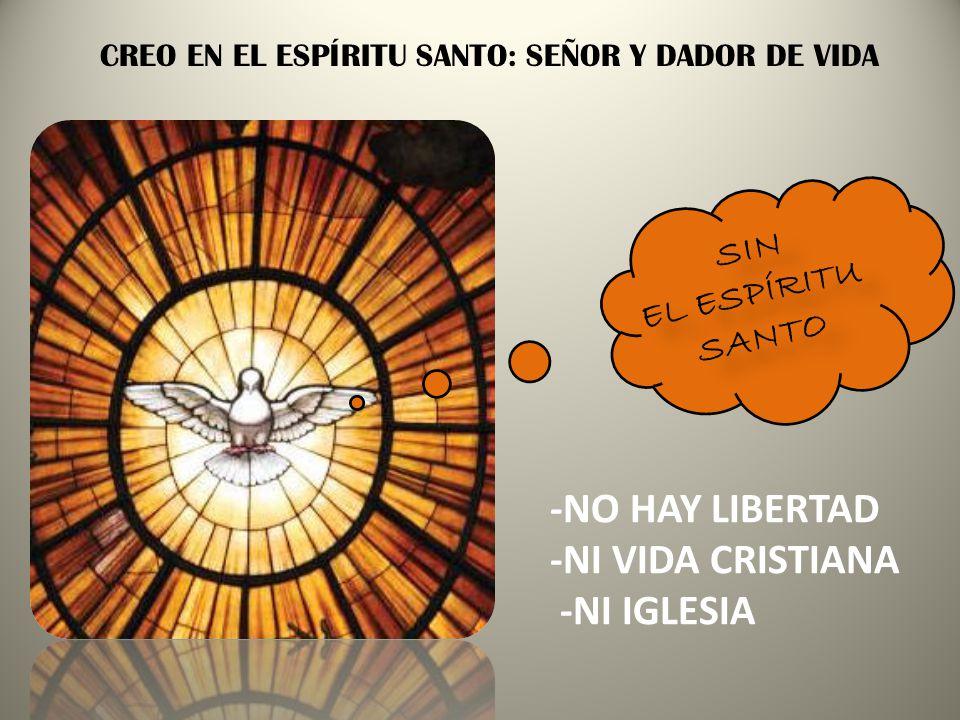 -NO HAY LIBERTAD -NI VIDA CRISTIANA -NI IGLESIA SIN EL ESPÍRITU SANTO
