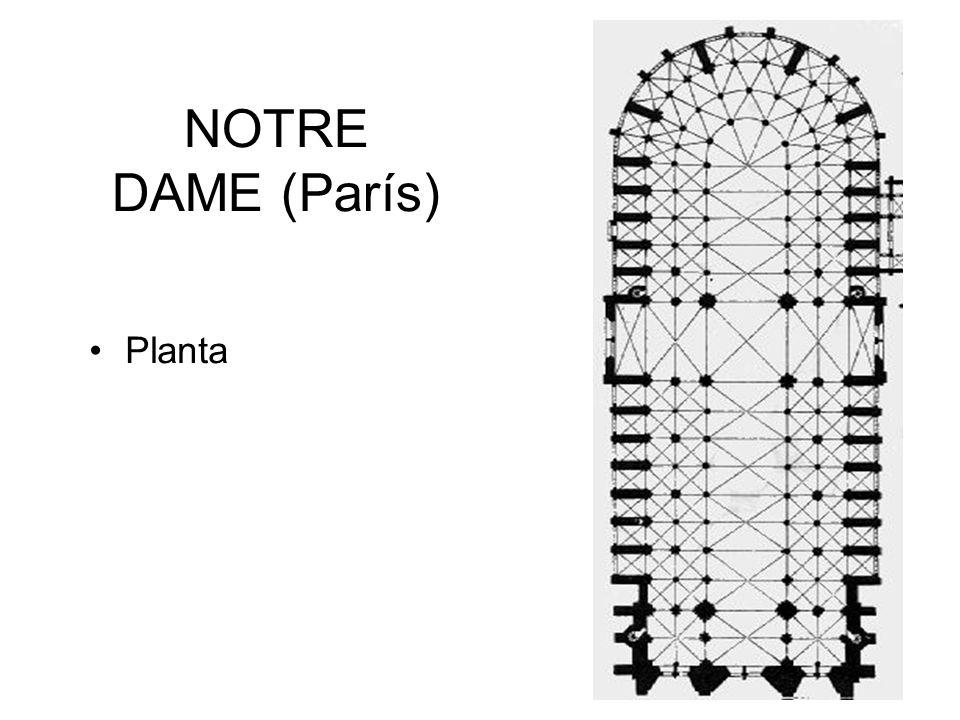 NOTRE DAME (París) Planta