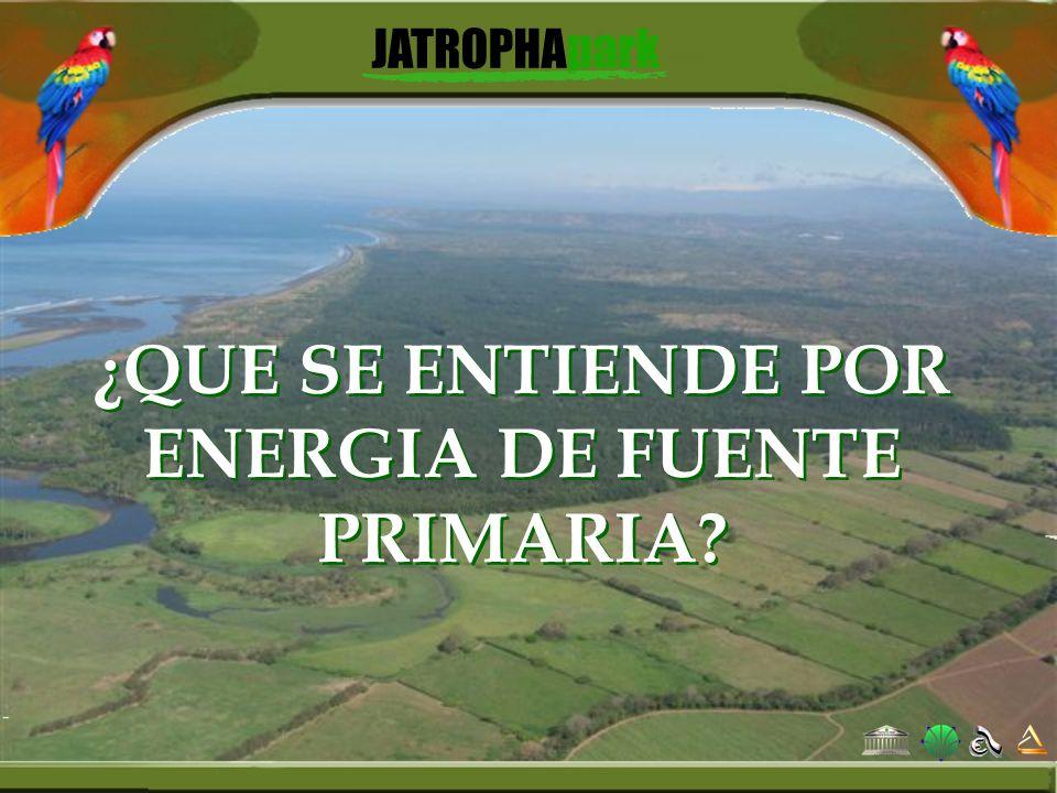 ¿QUE SE ENTIENDE POR ENERGIA DE FUENTE PRIMARIA