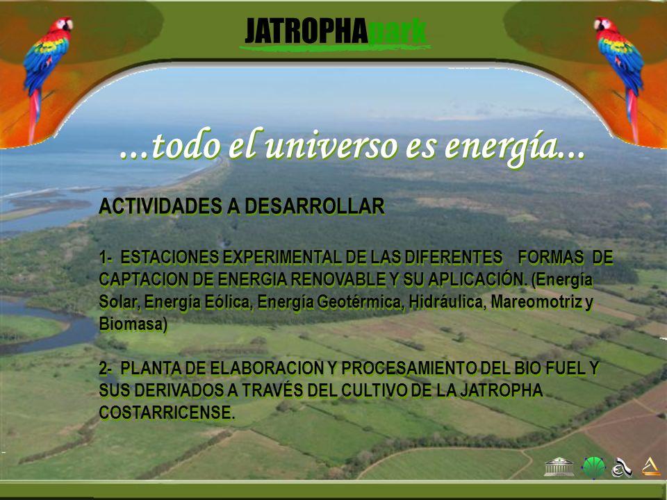 ...todo el universo es energía...