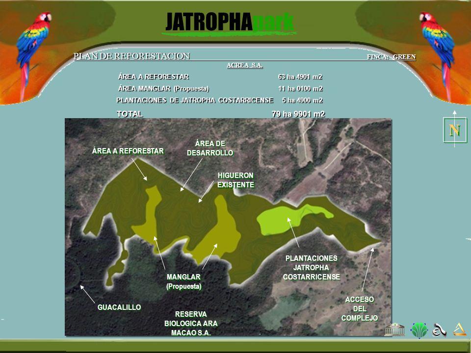 PLANTACIONES JATROPHA COSTARRICENSE RESERVA BIOLOGICA ARA MACAO S.A.