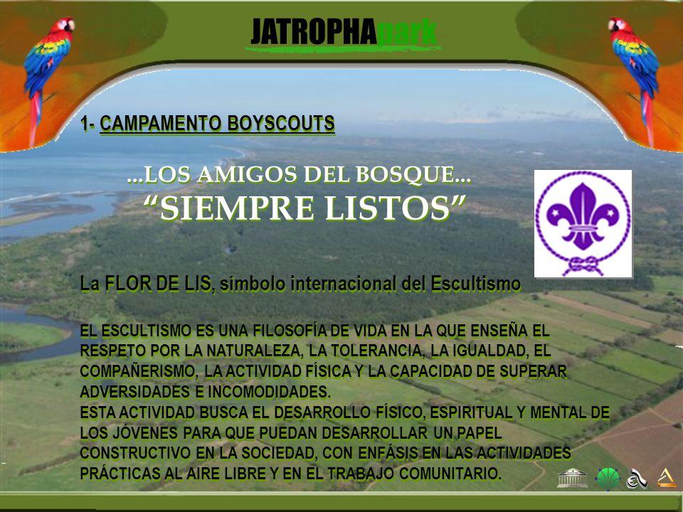 SIEMPRE LISTOS 1- CAMPAMENTO BOYSCOUTS ...LOS AMIGOS DEL BOSQUE...