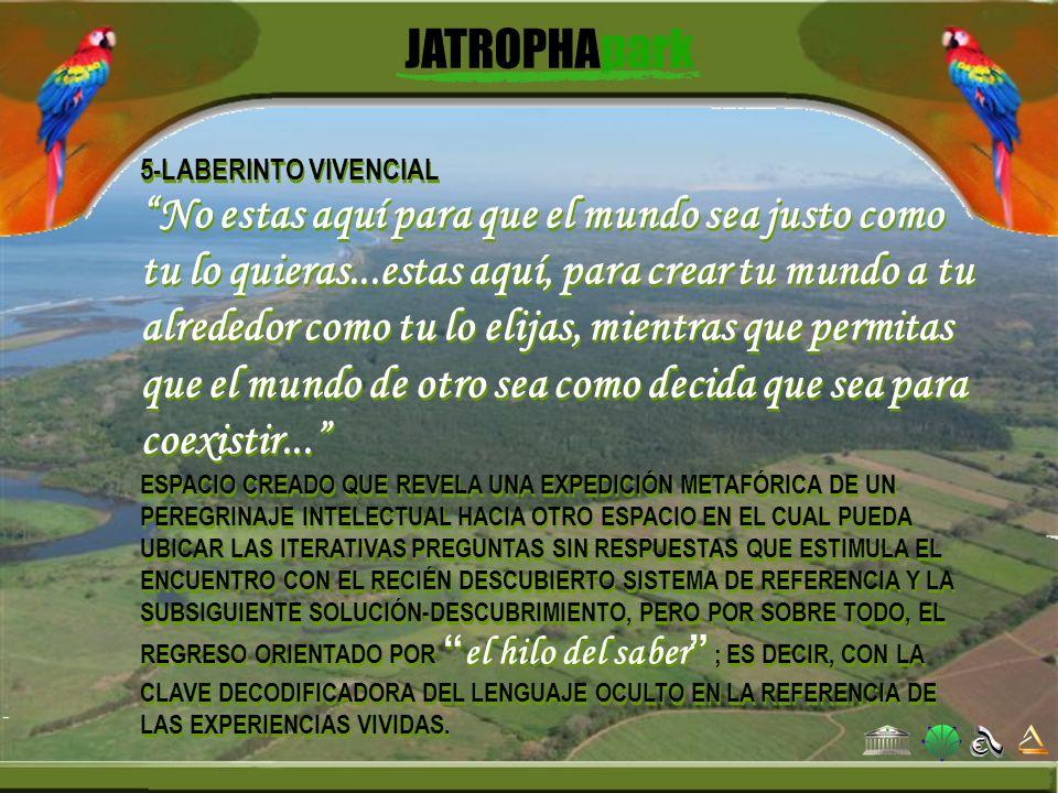 5-LABERINTO VIVENCIAL