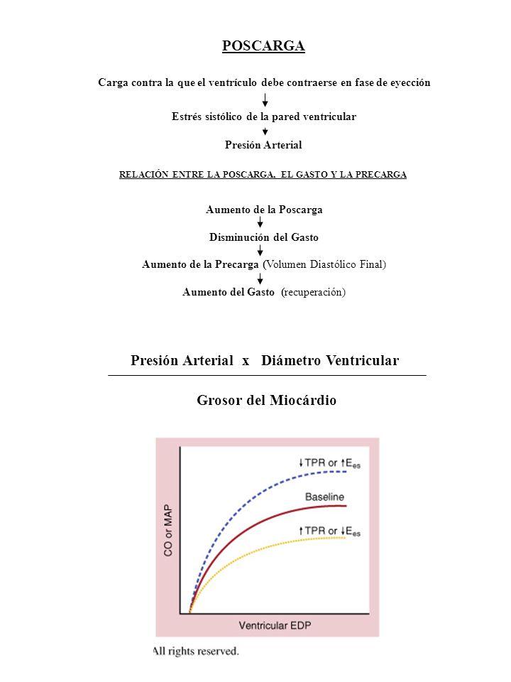 Presión Arterial x Diámetro Ventricular