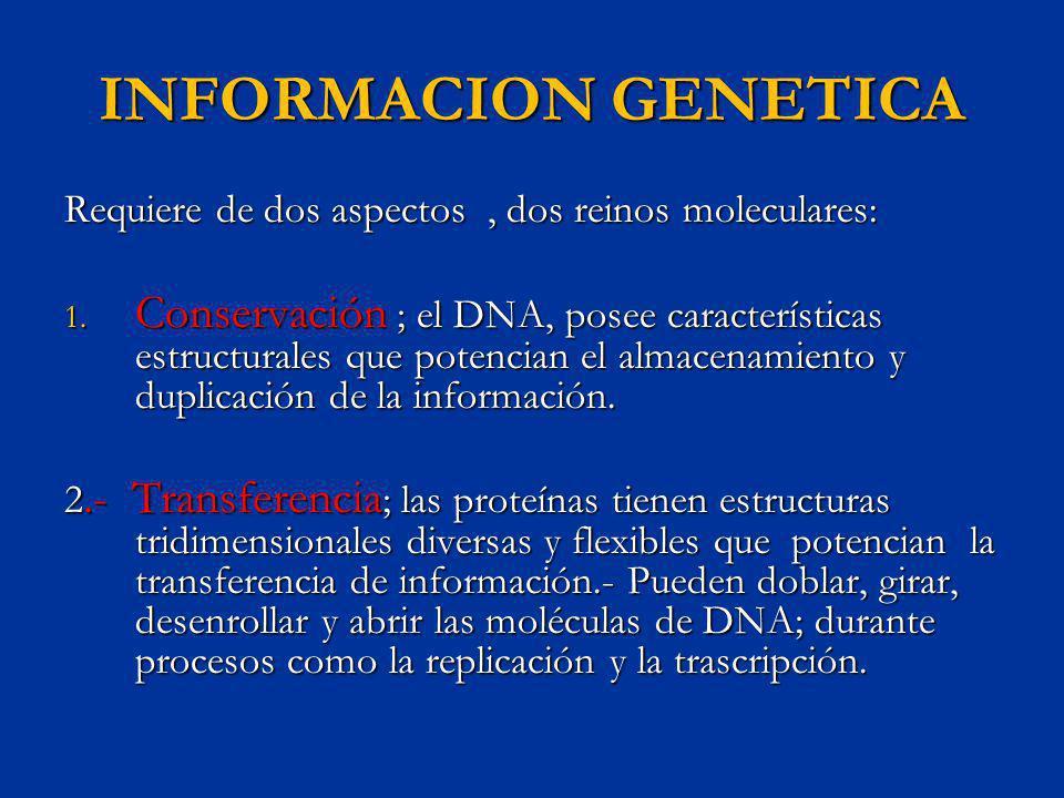 INFORMACION GENETICA Requiere de dos aspectos , dos reinos moleculares: