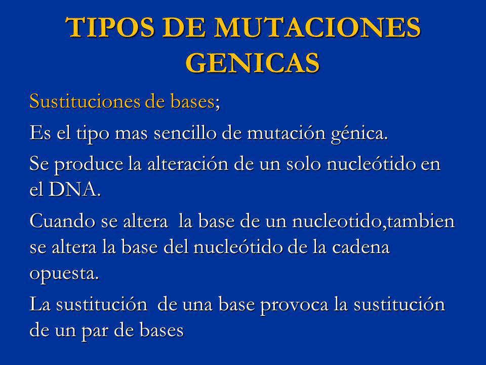 TIPOS DE MUTACIONES GENICAS