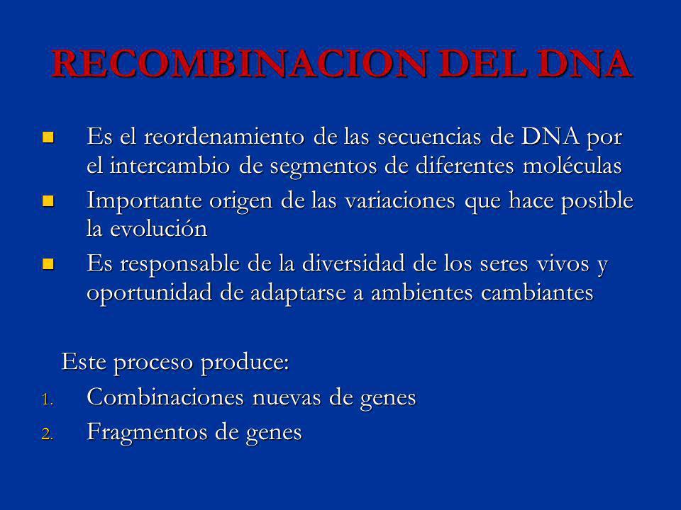 RECOMBINACION DEL DNA Es el reordenamiento de las secuencias de DNA por el intercambio de segmentos de diferentes moléculas.