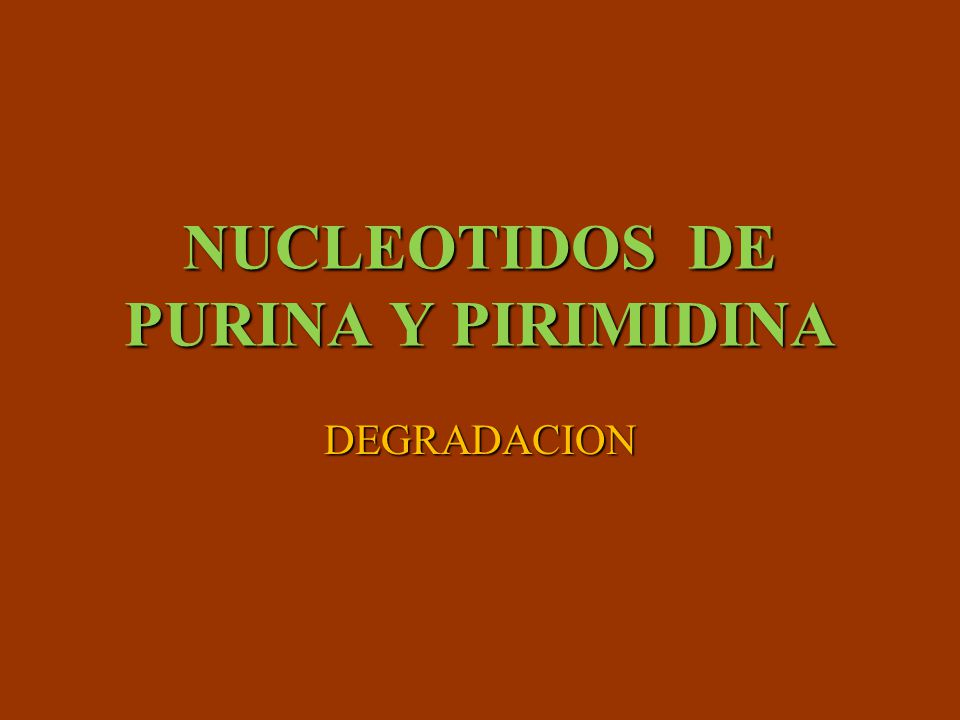 NUCLEOTIDOS DE PURINA Y PIRIMIDINA
