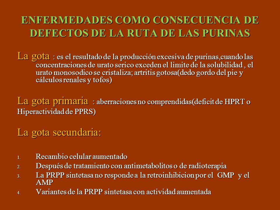 ENFERMEDADES COMO CONSECUENCIA DE DEFECTOS DE LA RUTA DE LAS PURINAS