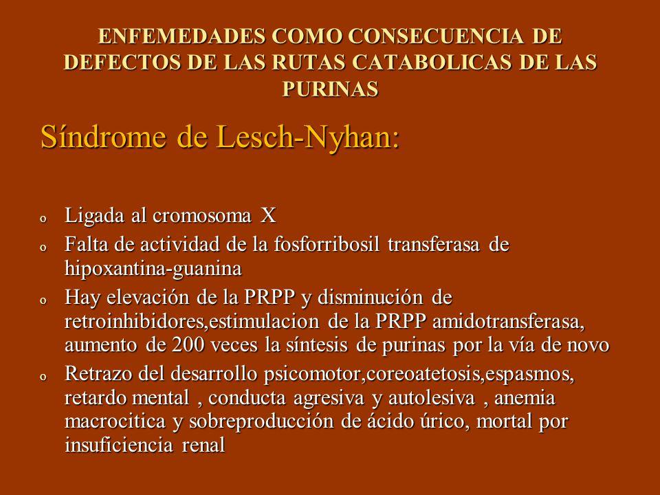 Síndrome de Lesch-Nyhan: