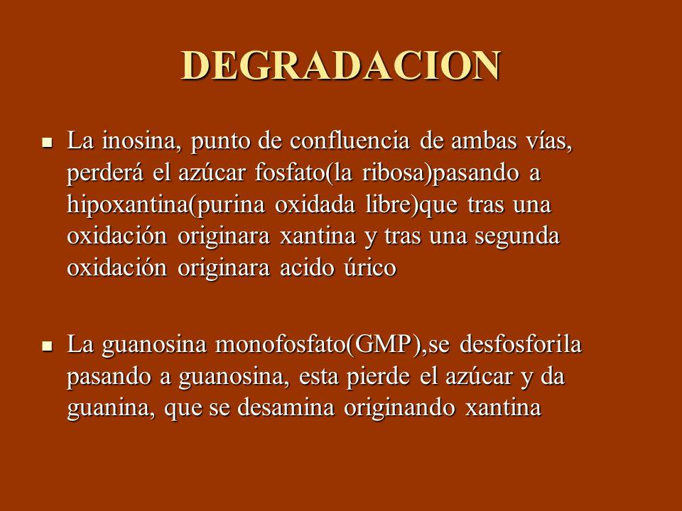 DEGRADACION