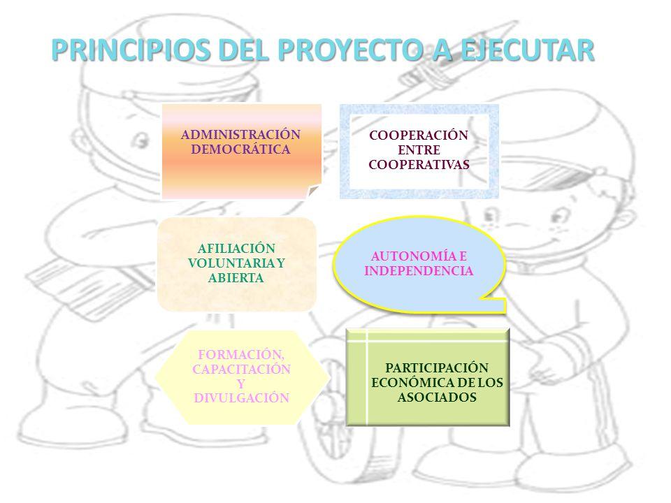 PRINCIPIOS DEL PROYECTO A EJECUTAR