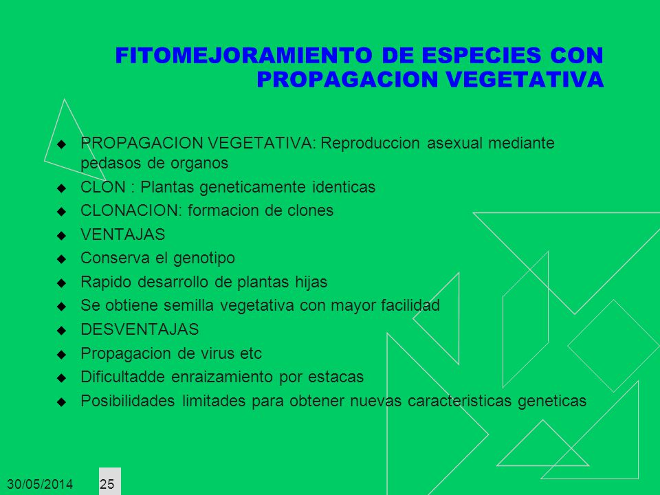 FITOMEJORAMIENTO DE ESPECIES CON PROPAGACION VEGETATIVA