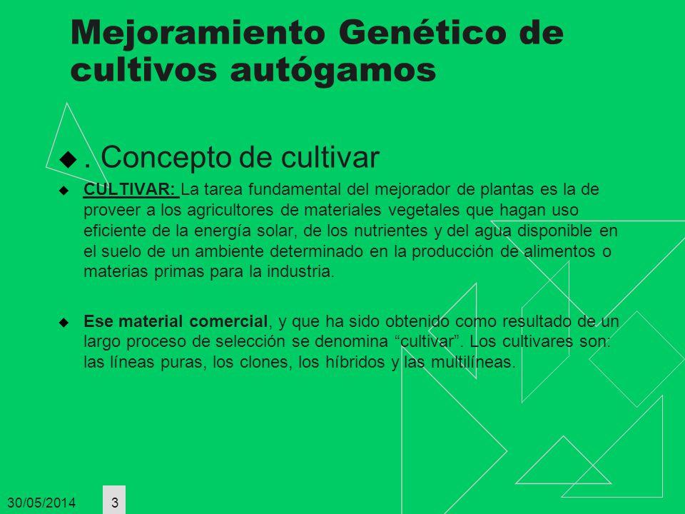 Mejoramiento Genético de cultivos autógamos