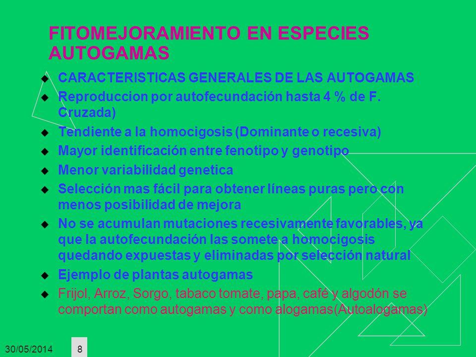 FITOMEJORAMIENTO EN ESPECIES AUTOGAMAS