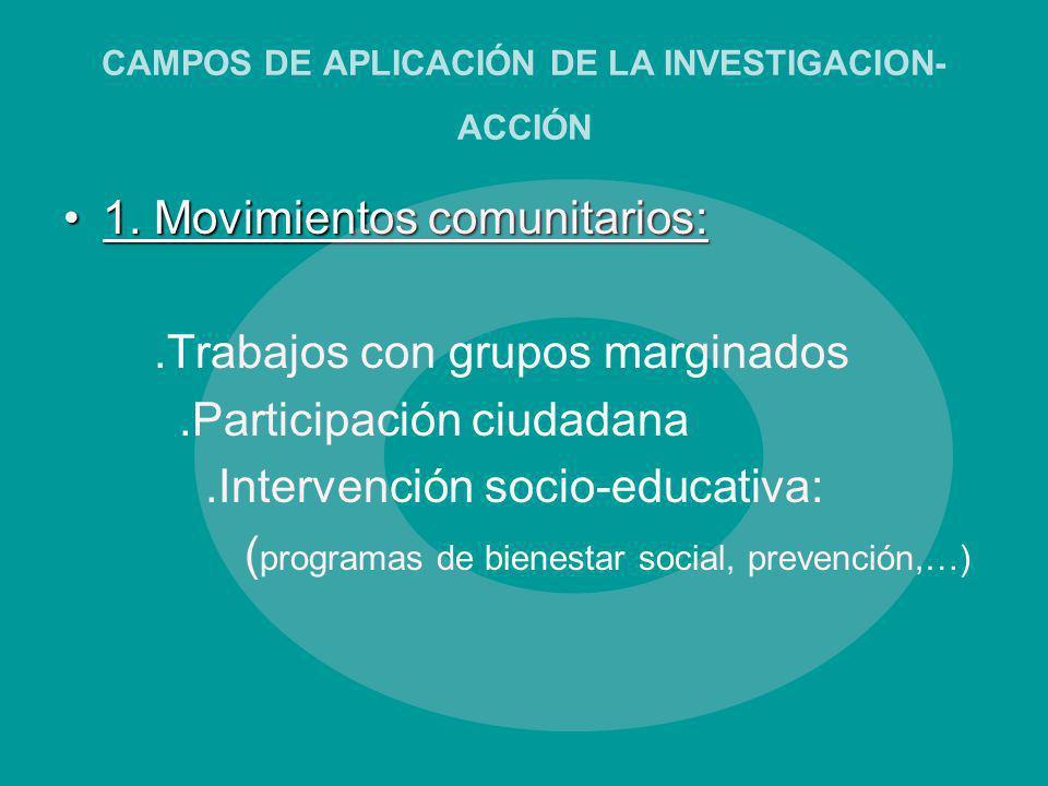 CAMPOS DE APLICACIÓN DE LA INVESTIGACION-ACCIÓN