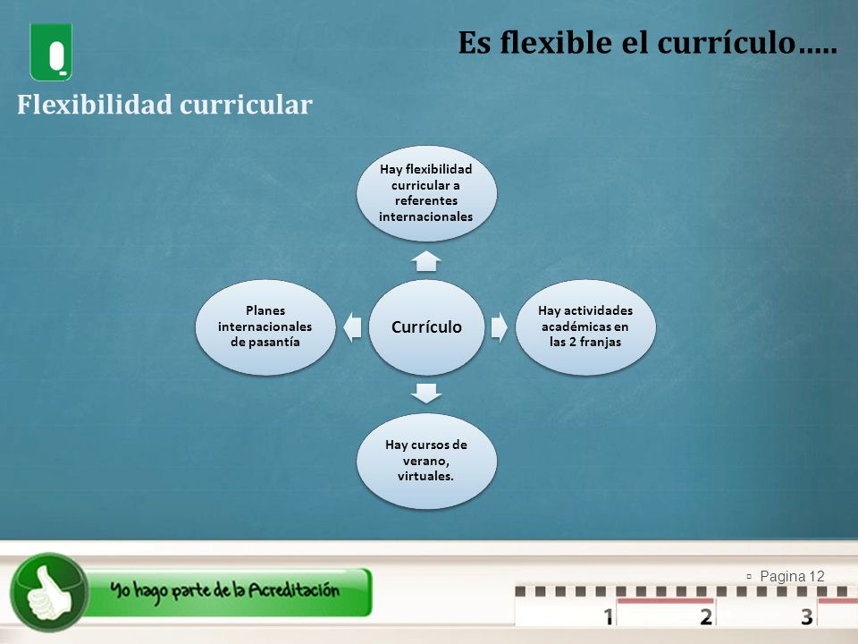 Es flexible el currículo…..