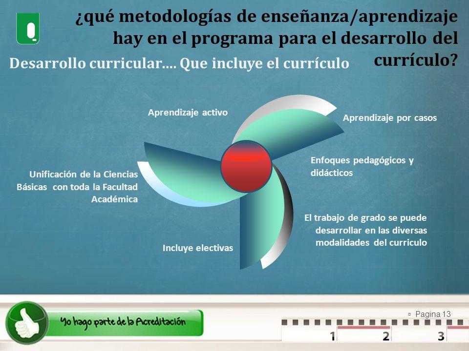 ¿qué metodologías de enseñanza/aprendizaje hay en el programa para el desarrollo del currículo
