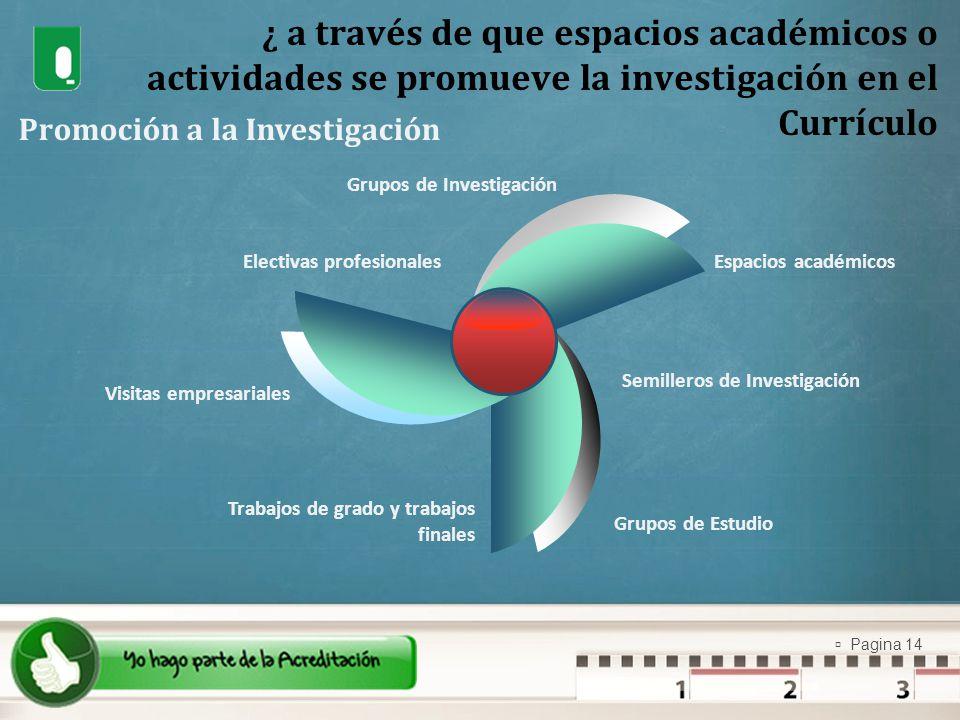 ¿ a través de que espacios académicos o actividades se promueve la investigación en el Currículo